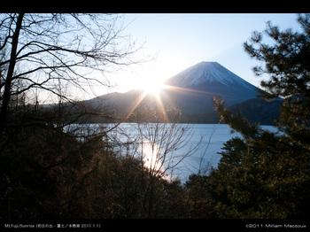 Sunrise2011.jpg