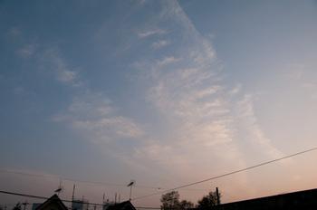 20110416-IMGP4438.jpg